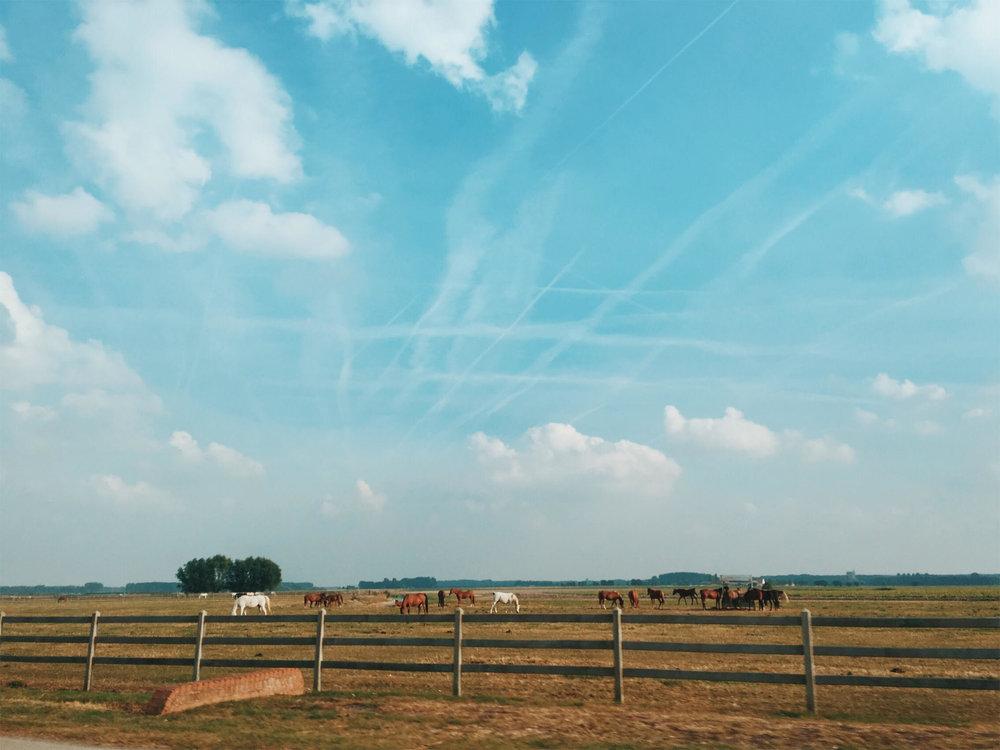 9/21/2016 —Knokke-Heist, Belgium