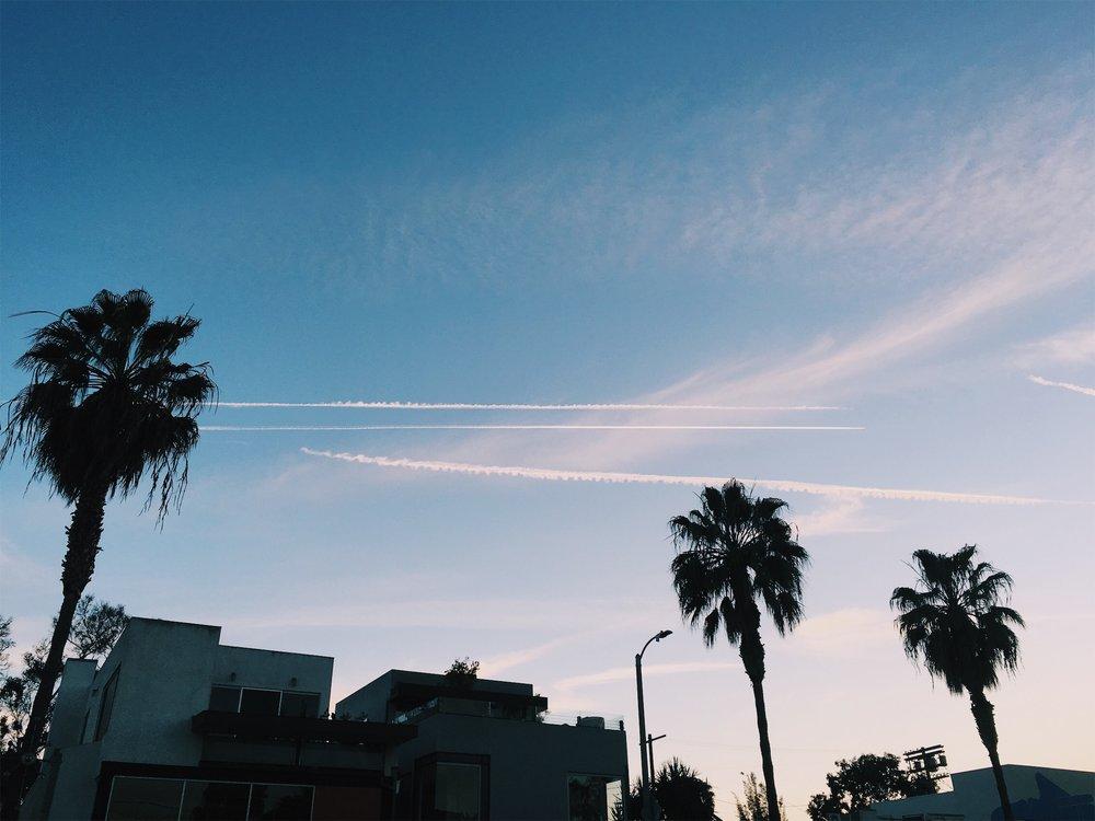 3/4/2017 — Abbot Kinney, Venice, Los Angeles