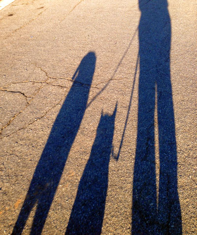 Long Shadows of Pamela, Quigly, and Jonni