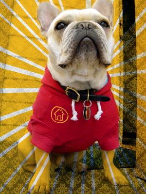 Quigley-Ruff Haus mascot