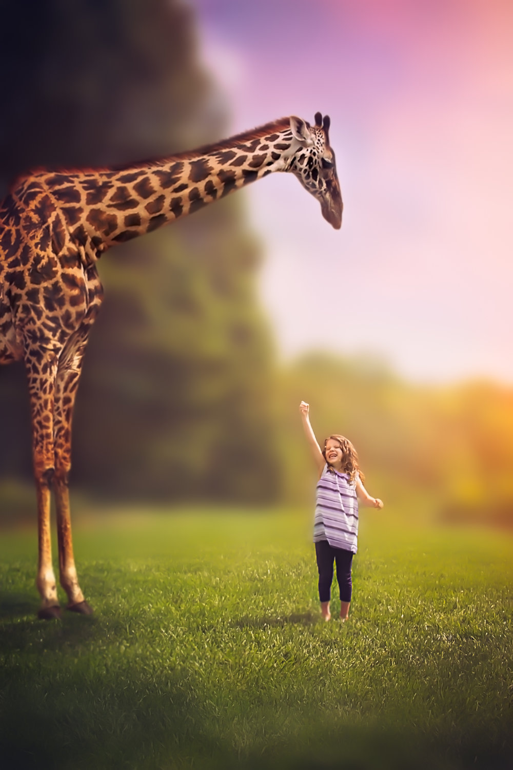 Giraffe Dream Session By Say Yes To Jess Cincinnati Fantasy Photographer
