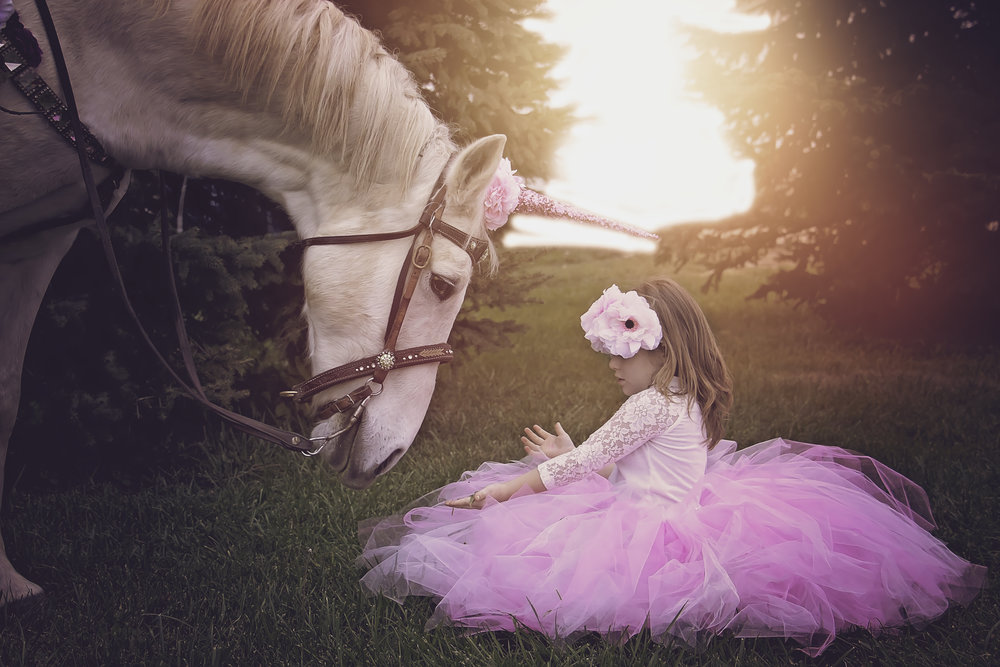 Unicorn Photoshoot for Children and adults. Meet a unicorn in cincinnati Ohio
