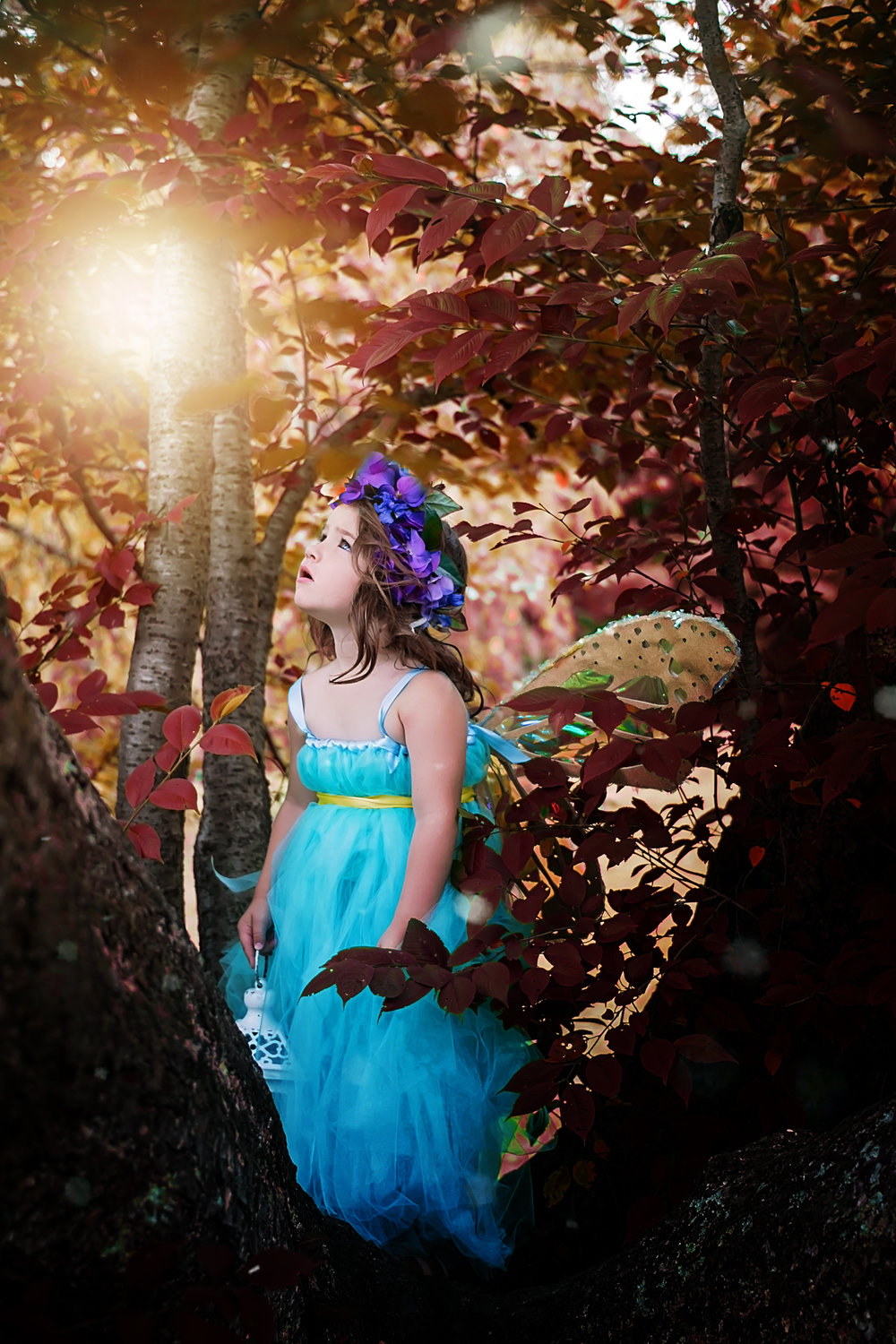 Cincinnati Photographer turns little girls dream into amazing images you have to see!