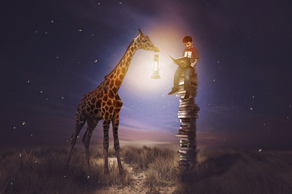 Boy reading to giraffe Creative Etherial image by Cincinnati Photographer Jess summers of Say Yes To Jess.jpg