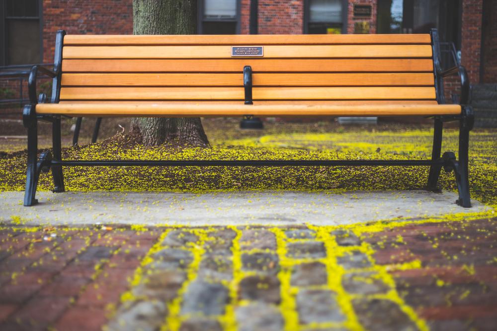 spring-bench.jpg