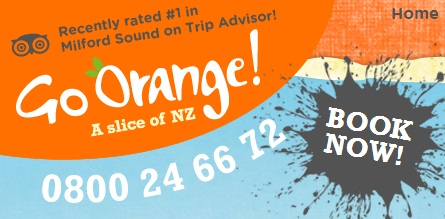 For scenic trips and kayaking around Milford Sound and Doubtful Sound