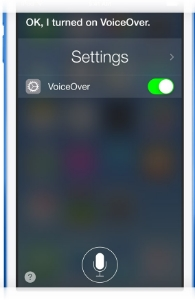 Siri Interface turning VoiceOver on