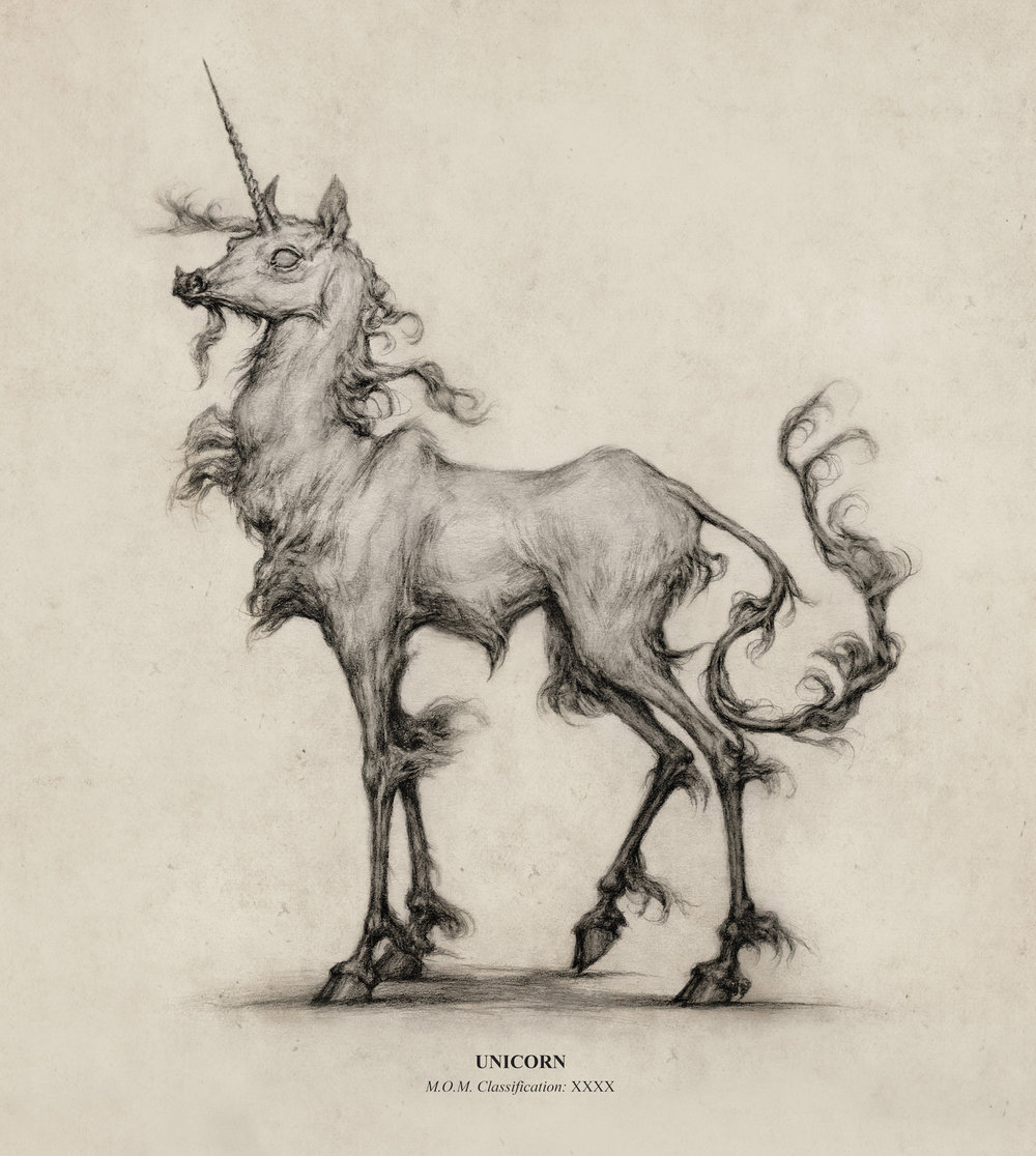 illustration_unicorn.jpg