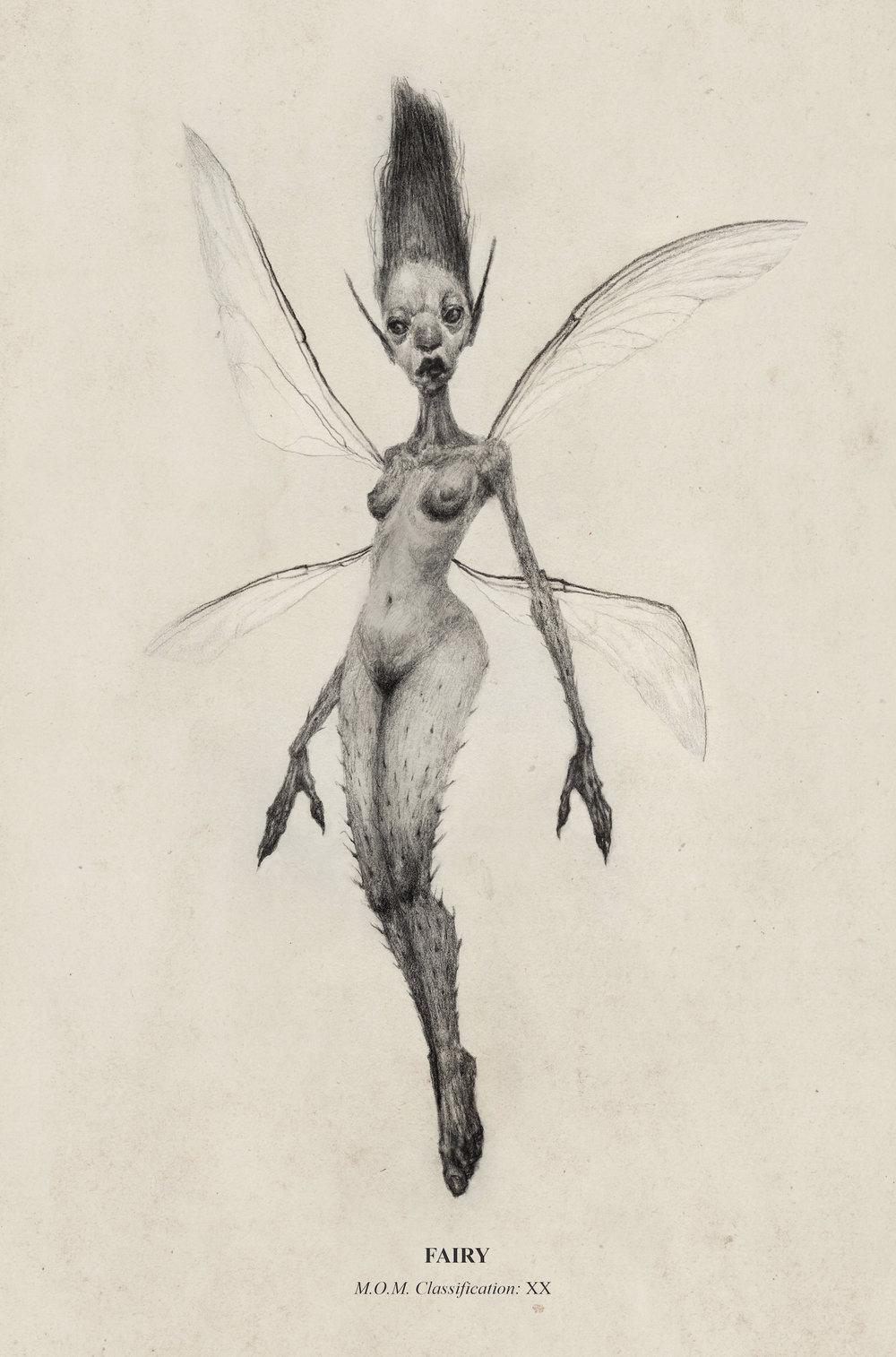illustration_fairy1.jpg