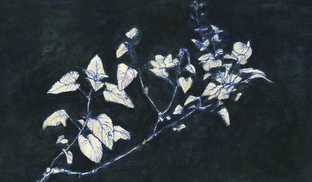 sketchbook_garden.png