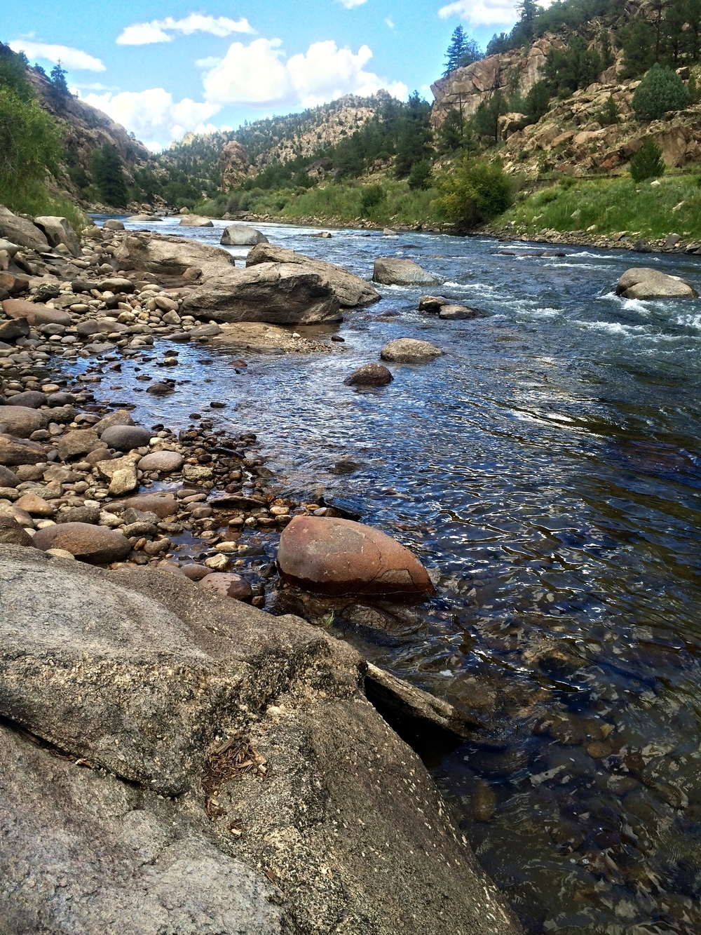 The Arkansas River in Brown's Canyon, just below my campsite.