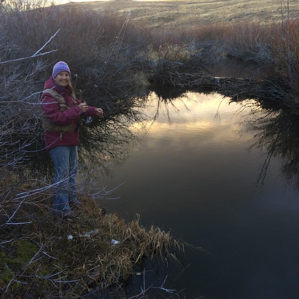 Beaver Ponds near Bruce & Janette