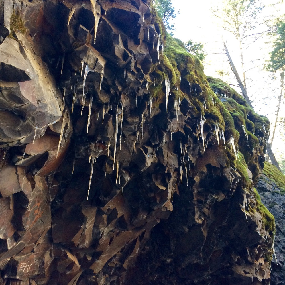 Icicles and moss