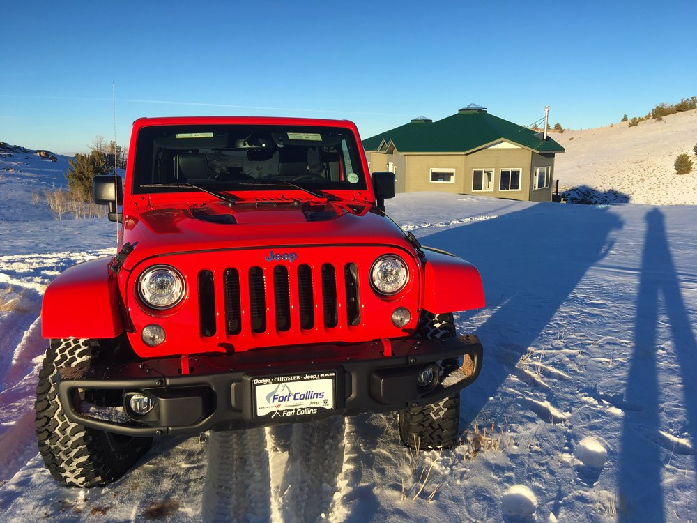 Rubi has no problem with the snow