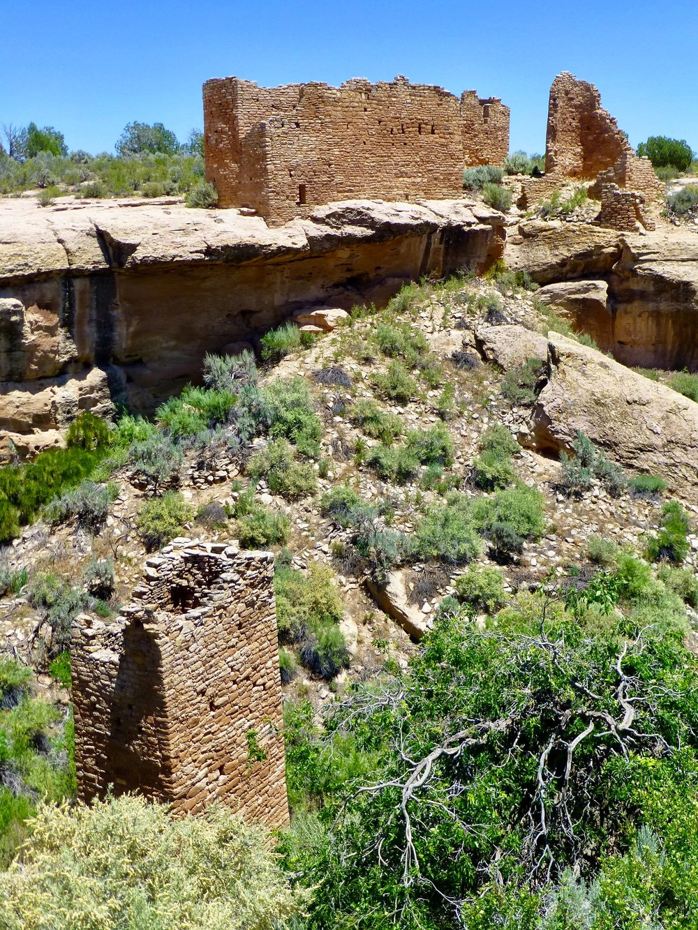 Square Tower ruin with Hovenweep Castle above