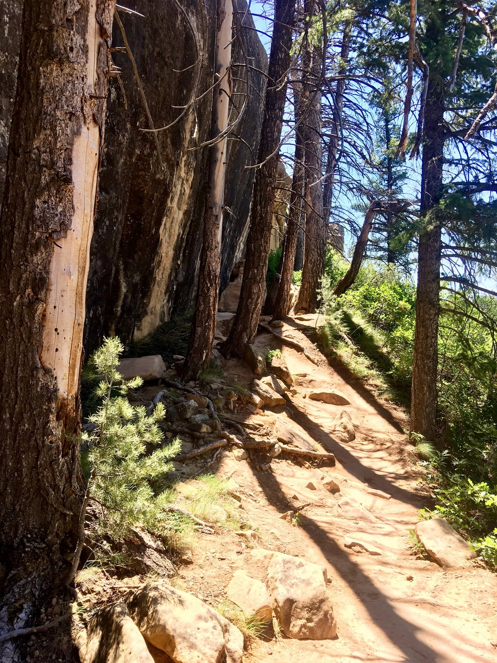 The Trail to Petroglyph Point