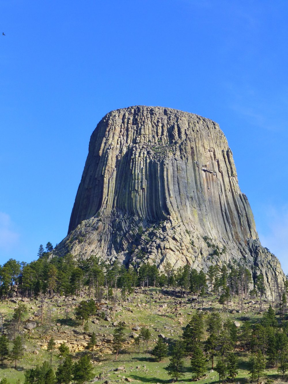 Devil's tower at sunrise from our campsite