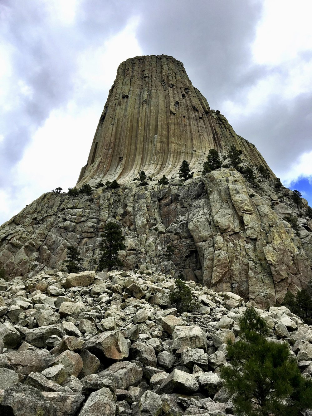 Devil's Tower as seen from the Tower Trail