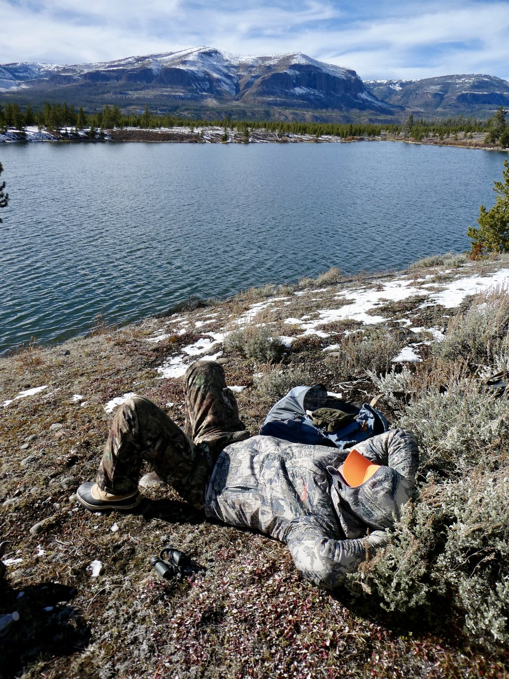 Catching a nap at Bridger Lake south of Yellowstone Park.