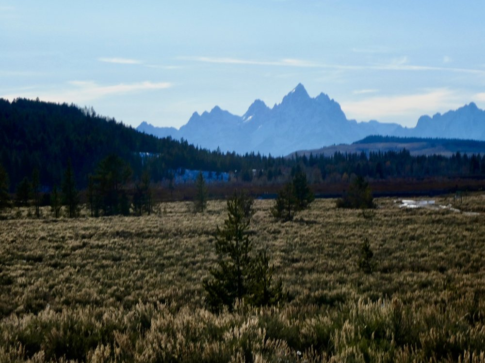 The Teton Mountains in the distance