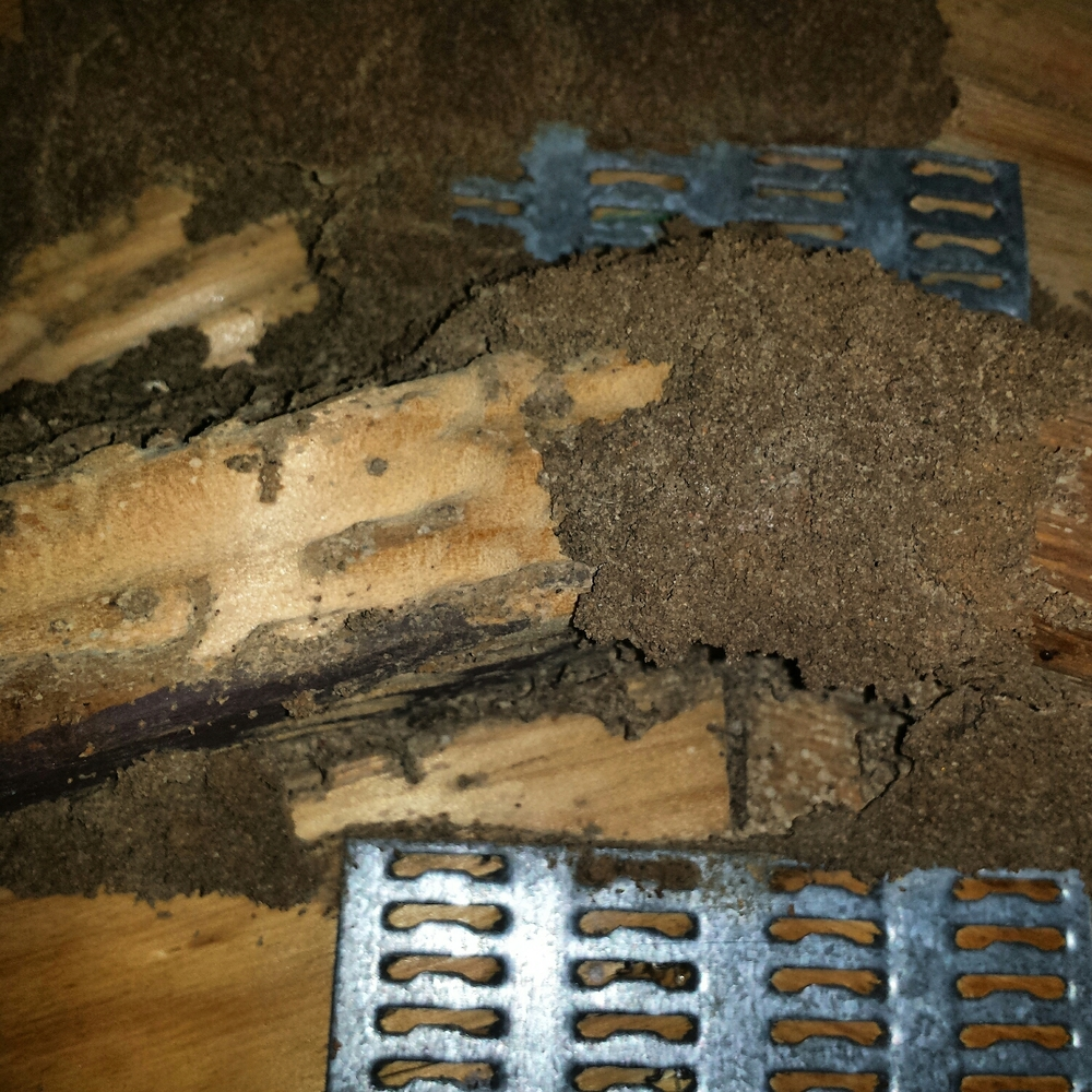 The damage found in the roof truss was found at the furthest point away from the manhole!