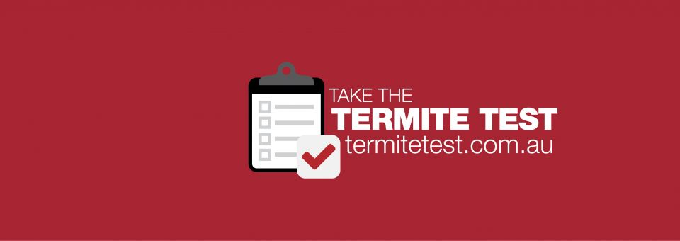 Click to open the Termite Test Page!
