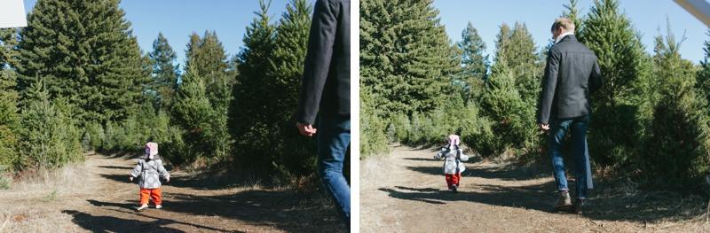0178_MegPerotti_tree
