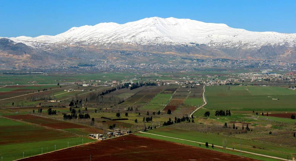 Lebanon's Bekaa Valley   (Photo courtesy of Chateau Musar)