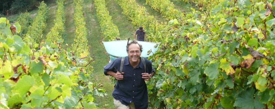 Nicolas Joly in his Vineyard  (Photo courtesy of Nicolas Joly)