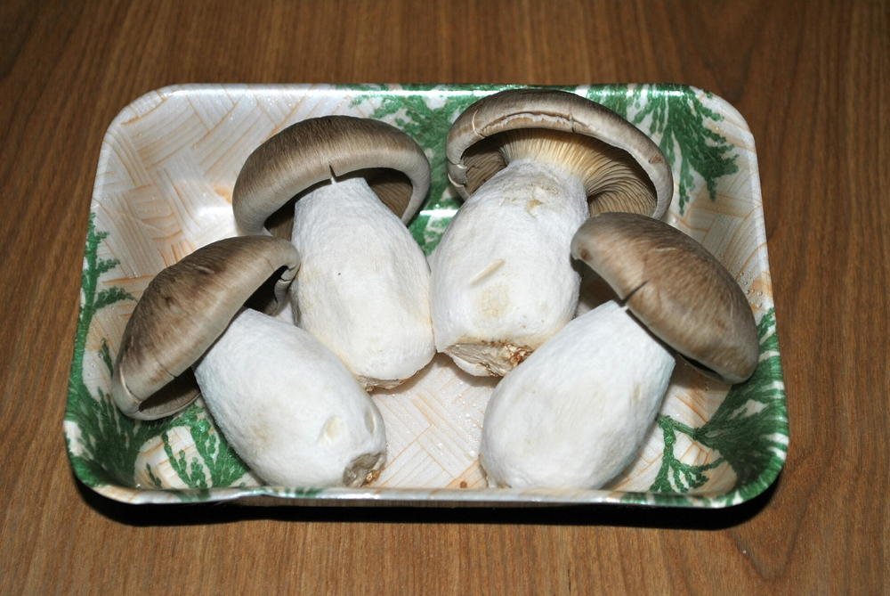 "Hon Shimeji mushrooms (Photo:           96               Normal   0           false   false   false     EN-US   X-NONE   X-NONE                                                                                                                                                                                                                                                                                                                                                                                                                                                                                                                                                                                                                                                                                                                                                                                                                                                                                  /* Style Definitions */ table.MsoNormalTable 	{mso-style-name:""Table Normal""; 	mso-tstyle-rowband-size:0; 	mso-tstyle-colband-size:0; 	mso-style-noshow:yes; 	mso-style-priority:99; 	mso-style-parent:""""; 	mso-padding-alt:0in 5.4pt 0in 5.4pt; 	mso-para-margin:0in; 	mso-para-margin-bottom:.0001pt; 	mso-pagination:widow-orphan; 	font-size:12.0pt; 	font-family:Calibri; 	mso-ascii-font-family:Calibri; 	mso-ascii-theme-font:minor-latin; 	mso-hansi-font-family:Calibri; 	mso-hansi-theme-font:minor-latin;}      Kuha455405 - CC BY-SA 3.0]"