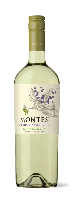 Sauvignon-Nouveau from Chile's Leyda Valley (Photo: Viñas Montes)
