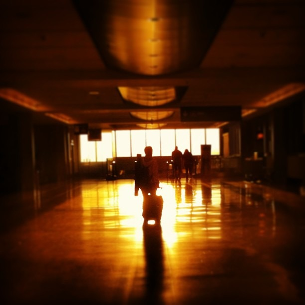 Light at the end of the [airport] tunnel. #travel #light #sun #sunset #gold #airport #symmetry
