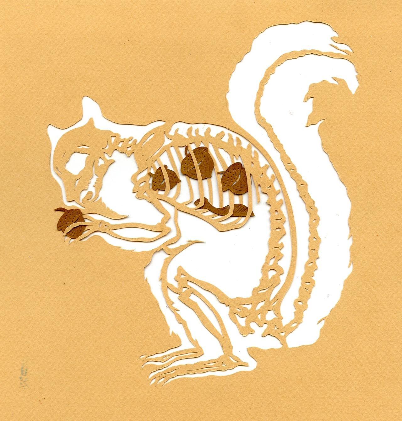inkhead: what squirrel ate, paper cut, 2013 bone a day  inkhead Hehe!