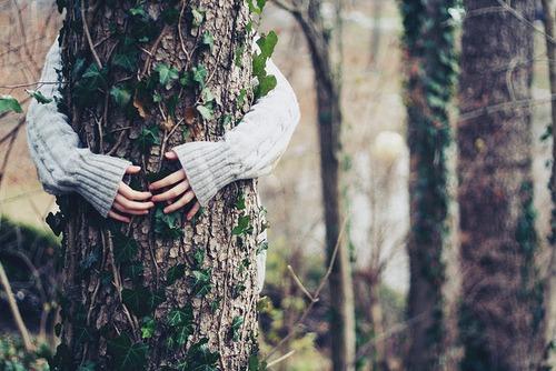 Tree Hugger! Follow for Fashion+Indie+Art+Wanderlust