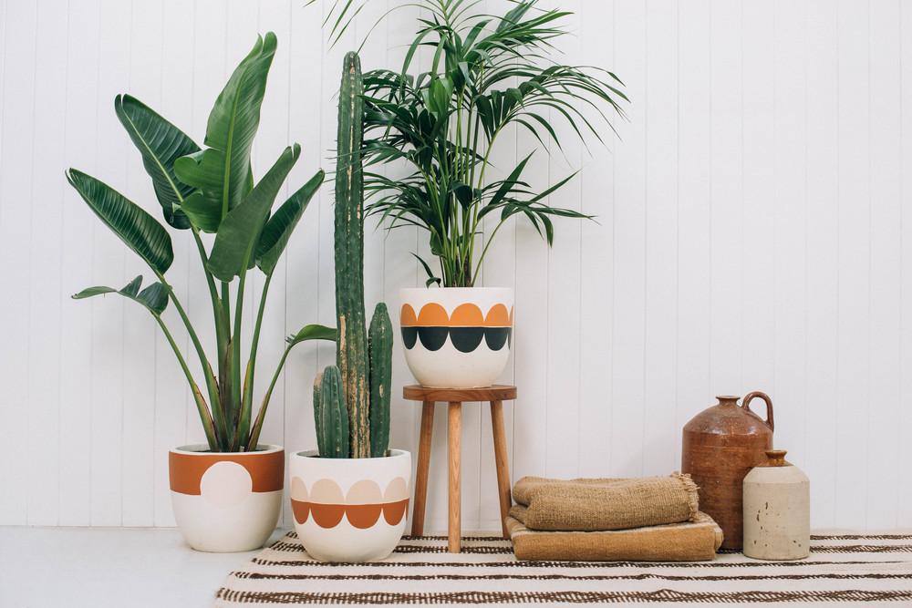 rosso-designer-pots