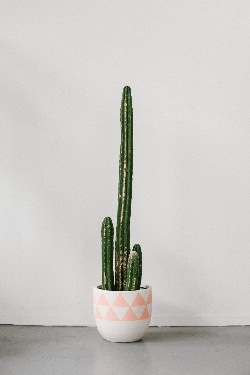 pots-Aztec Peach
