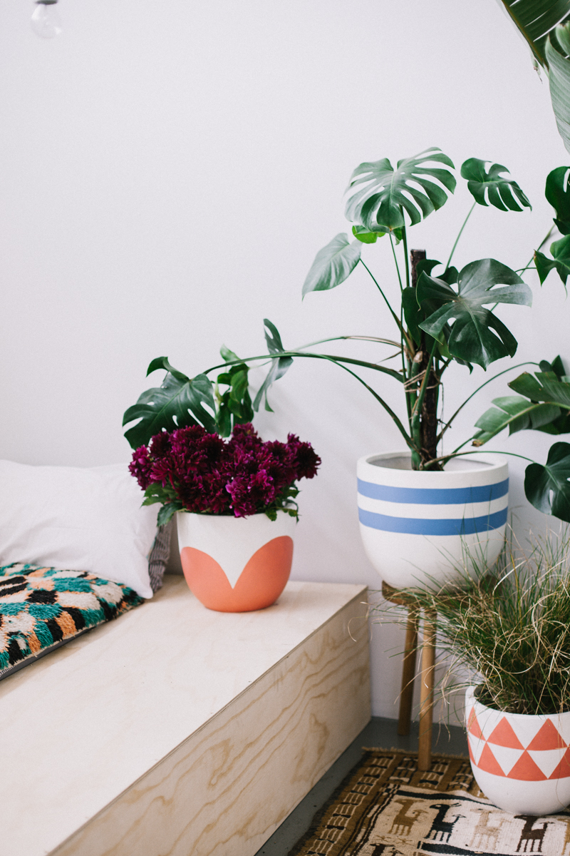petal-pots