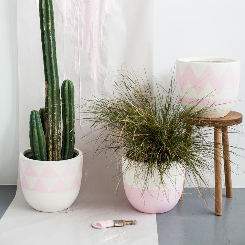 desert-pink