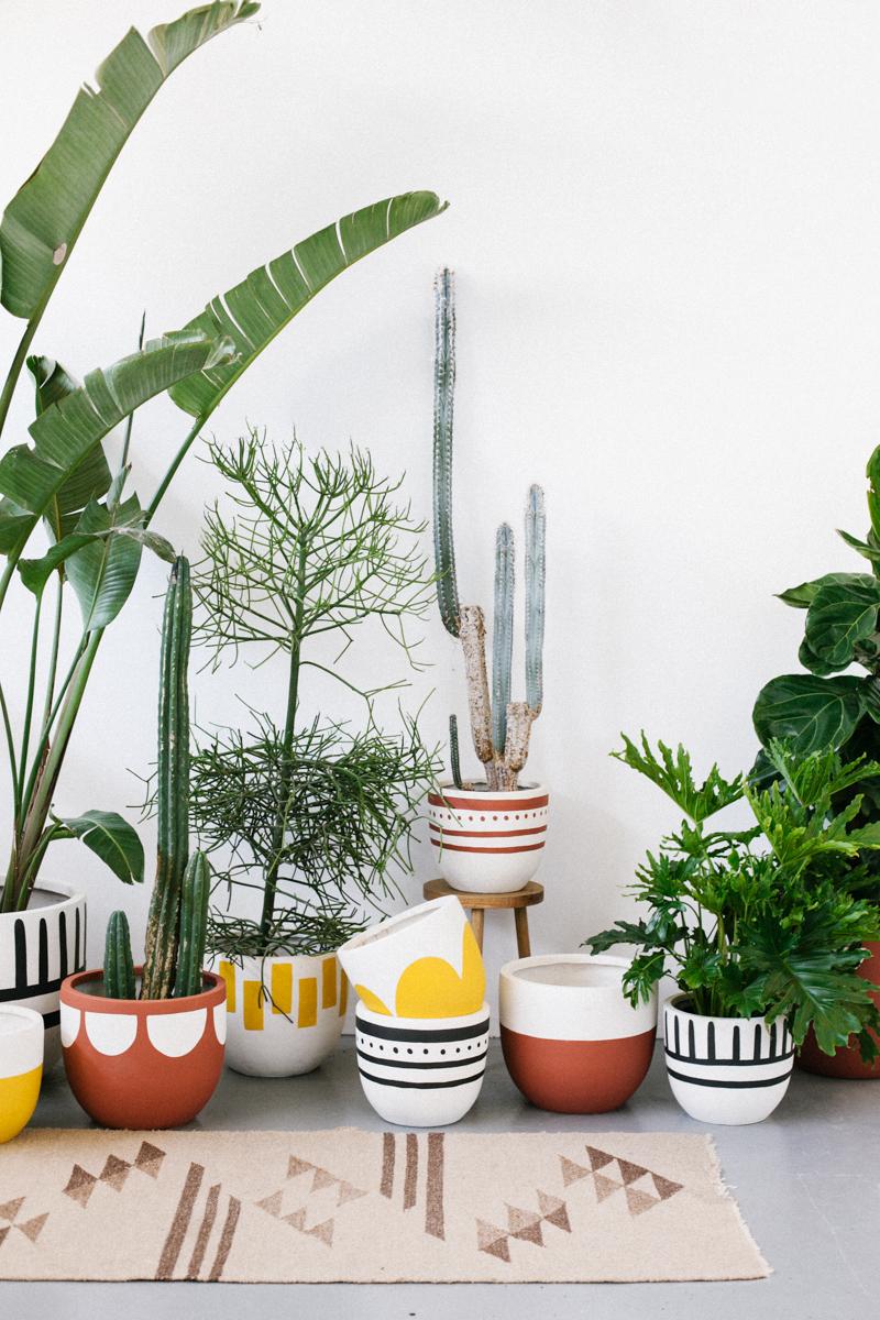 pop-and-scott-pots