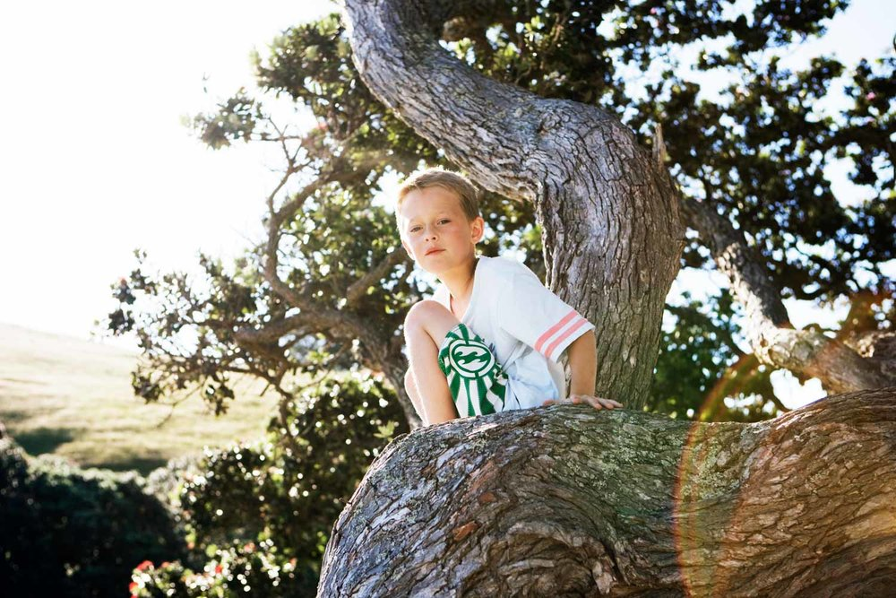 Young Boy Sitting On A Tree