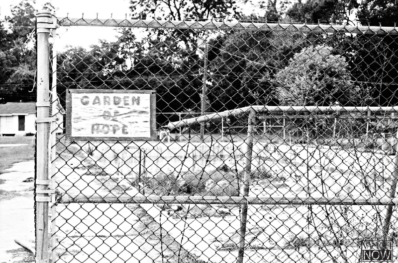 """""""Racial integration is often viewed as a wholly positive development in American history, but the fallout for blacks in the years that followed desegregation—the unrest, tension, and communal decline—often goes ignored. Take the public pool here in town for example—instead of integrating the pool, white town leaders decommissioned it in 1960. They preferred to close it to all residents than allow the black population to have access to it. Now, how can a town survive under those circumstances?"""""""