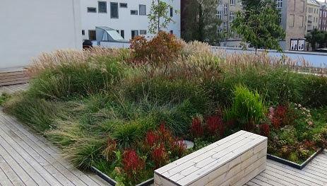 Tagterrasser og grønne tage Som noget nyt tilbyder Alletiders Anlæg at etablere tagterrasser og grønne tage. Læs mere →