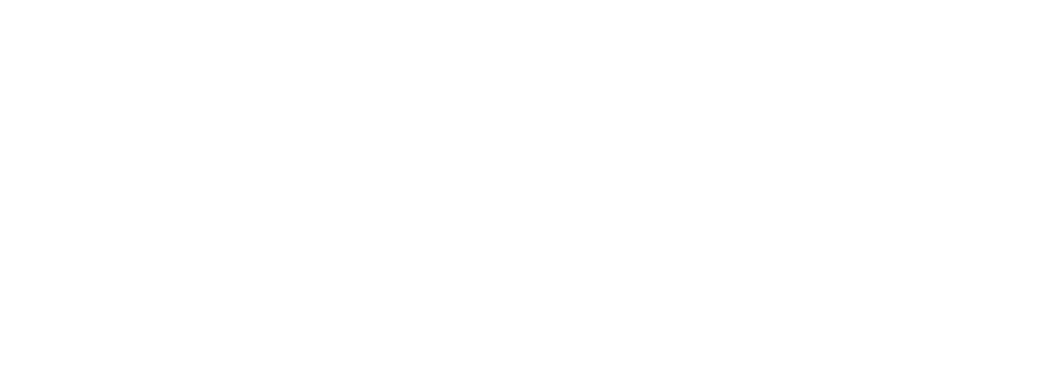 Edgeline Photography | Wellington Photographer