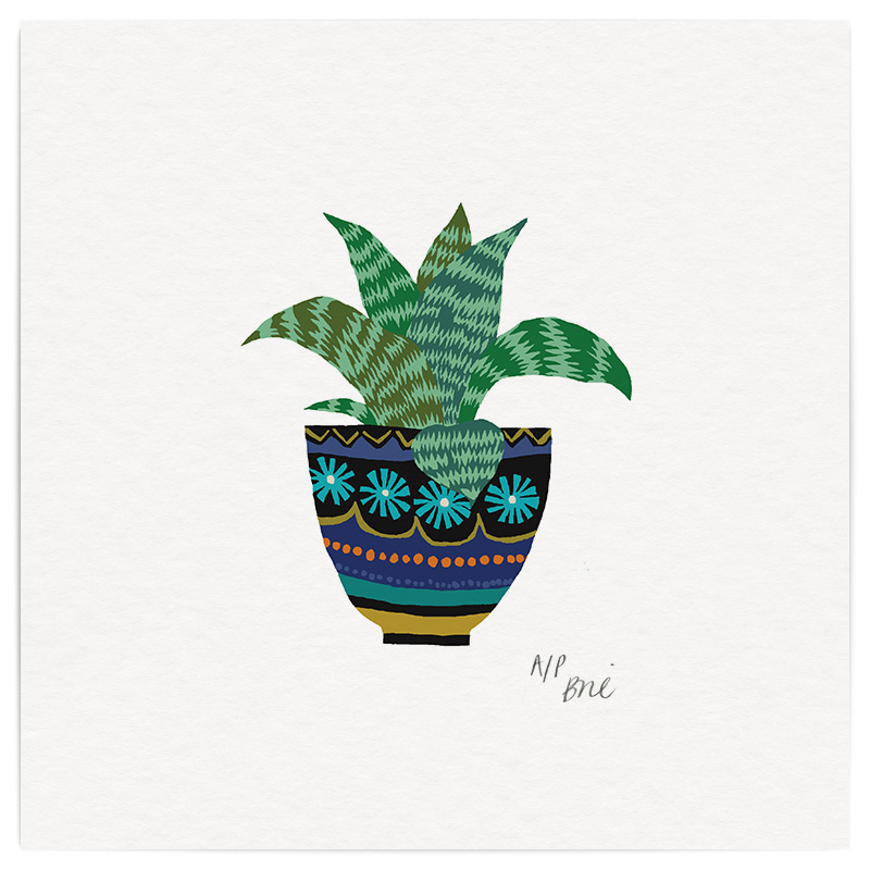 Aloe Plant Giclée Print on Archival Paper Edition of 40, signed 20 x 20cm Unframed  £34   © Brie Harrison 2016