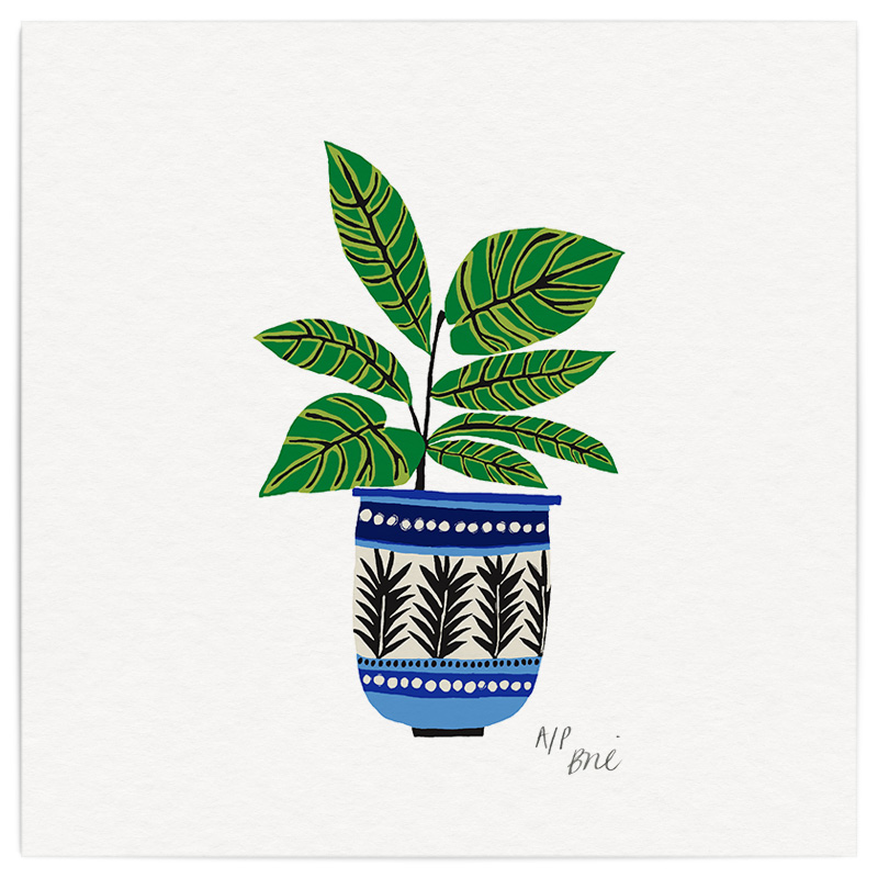 Green Potplant Giclée Print on Archival Paper Edition of 40, signed 20 x 20cm Unframed   Edition sold   £34   © Brie Harrison 2016