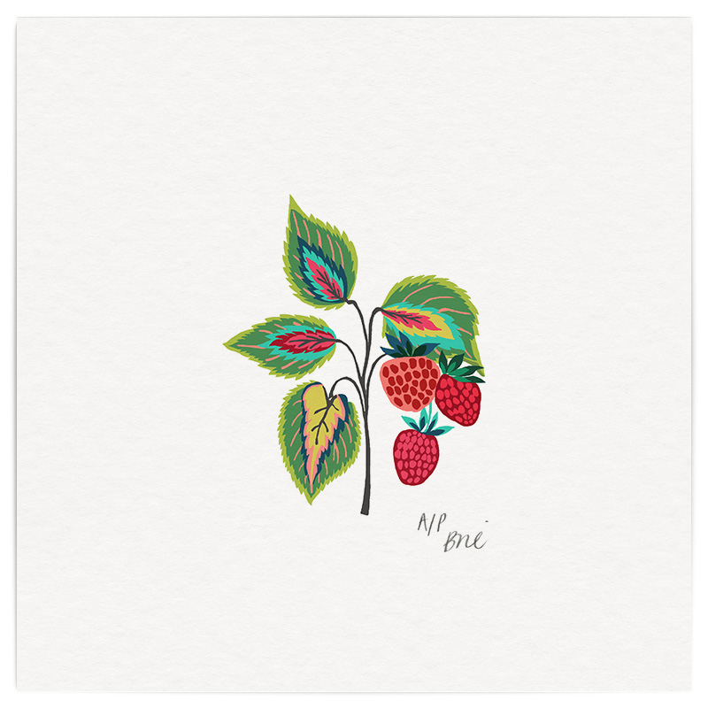 July Giclée Print on Archival Paper Edition of 20, signed 20 x 20cm Unframed  ...8 left  £34   © Brie Harrison 2015
