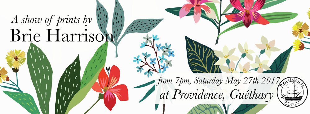 I'm having a collection of prints at  Providence  in Guéthary from next Saturday 27th May. The show is up in this lovely gallery space/coffee shop/bar for a few weeks and I'm very excited to be getting involved in something creative in this beautiful part of the world.