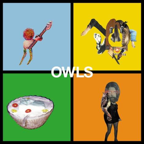 owls2.jpeg