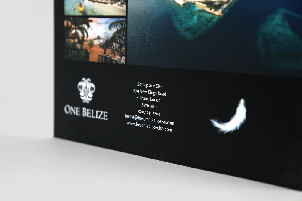 dowlingjones one belize brochure design
