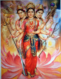 The Hindu 'Shakti'